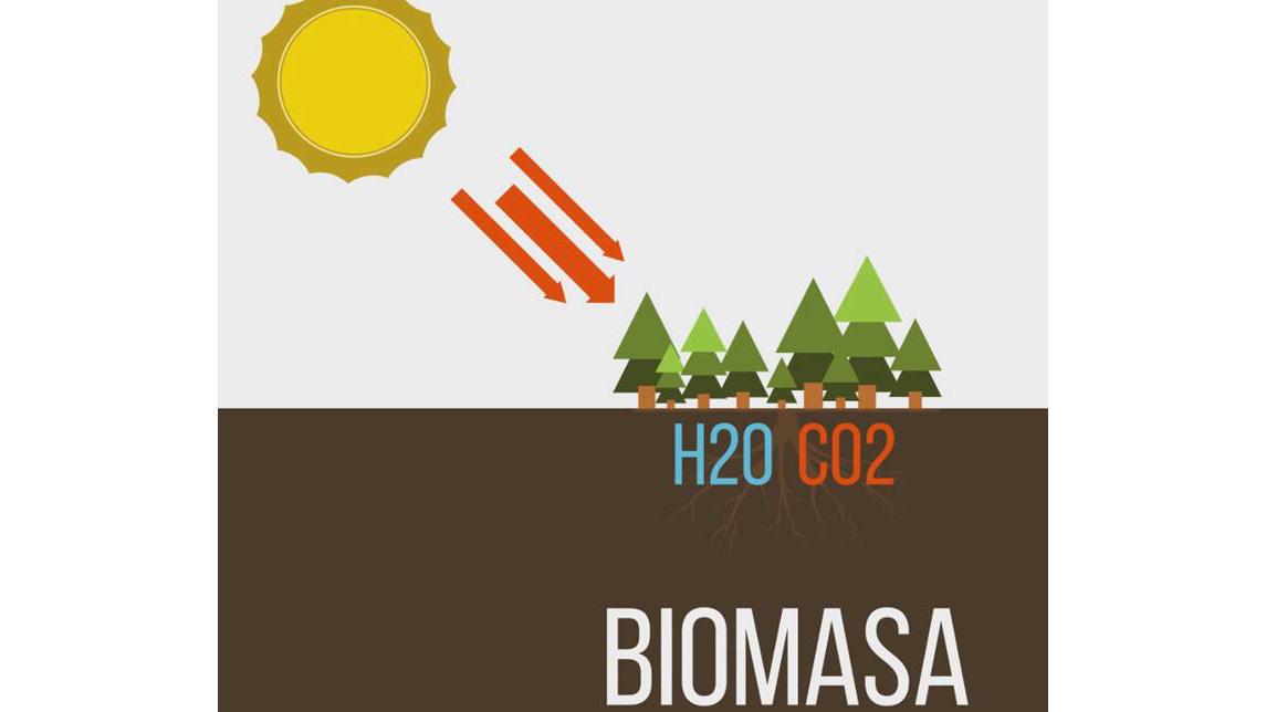 Usina de Biogas